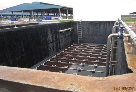 Hệ thống xử lý nước thải chăn nuôi sau biogas